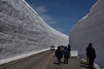 DSC_3517雪の大谷.JPG