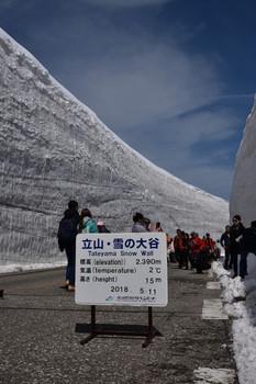 DSC_3531雪の大谷.JPG