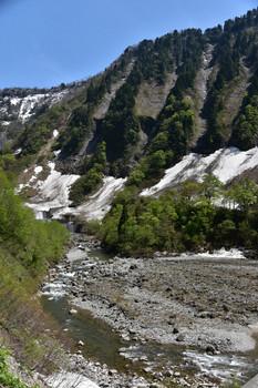 DSC_3559称名滝の直ぐした断崖.JPG