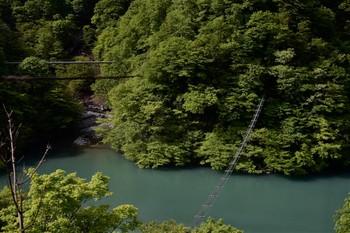 DSC_3684猿のための吊り橋.JPG