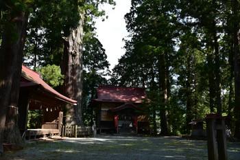 DSC_3893神社.JPG