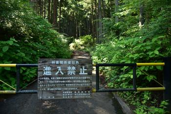 DSC_3911林道進入禁止ゲート.JPG