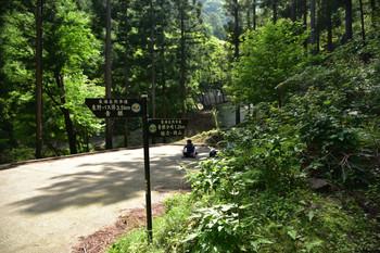 DSC_3921林道の終点.JPG