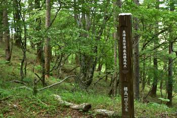 DSC_3938東海自然歩道最高地点.JPG