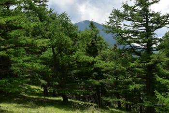 DSC_3944蛭ヶ岳.JPG