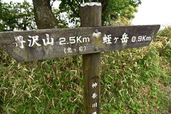 DSC_4018丹沢山へ2.5k.JPG