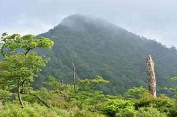 DSC_4071塔の岳を見上げる.JPG