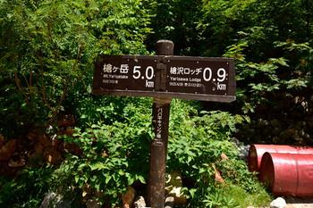 DSC_4328ババ平キャンプ場.JPG