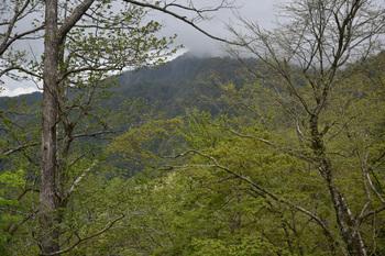 DSC_8107雲かかる蛭ヶ岳.JPG