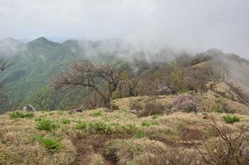 DSC_8158これから向かう登山道.JPG