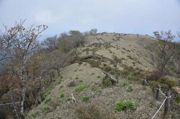 DSC_8188丹沢の登り.JPG