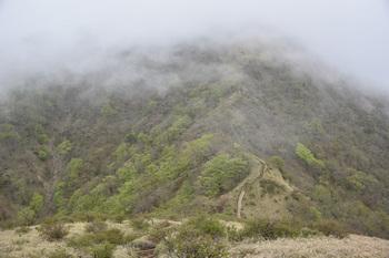 DSC_8191丹沢山の頂上にガス.JPG
