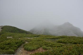 DSC_8716_小太郎山への道.jpg