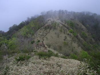ERIMG0013塔の岳への道.JPG
