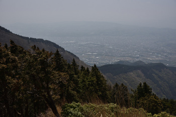 _DSC_77861108烏尾の登りから秦野の町.JPG
